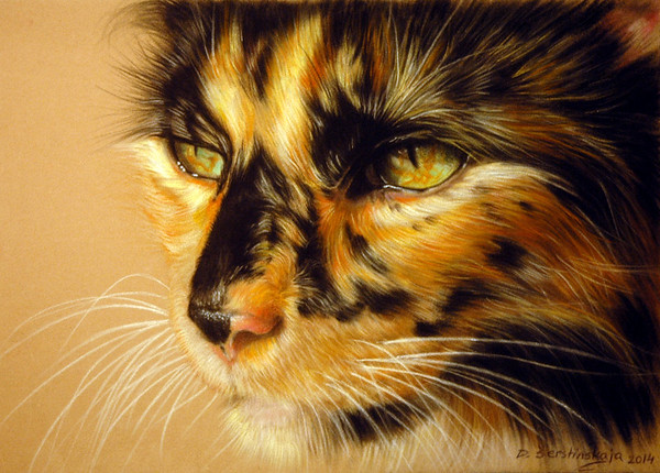 """Beautiful Cat"" (pastel) by Danguole Serstinskaja"