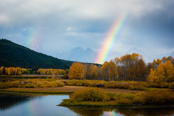 Fall Colors Of The Tetons