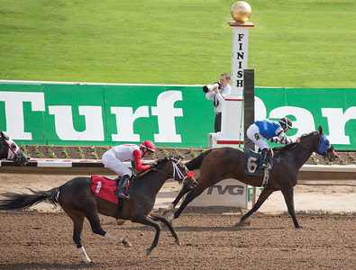 Turf Paradise Opening Day 18 October 2014 October 18 2014  005