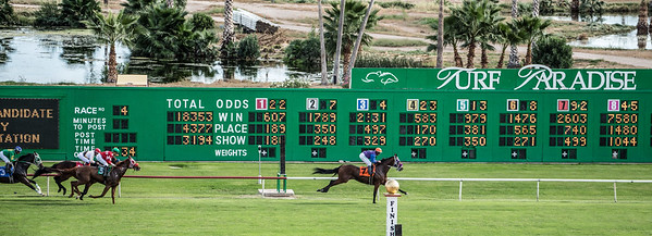 Turf Paradise Opening Day 18 October 2014 October 18 2014  007