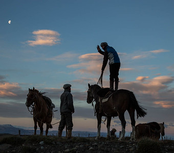 Gauchos horsing around