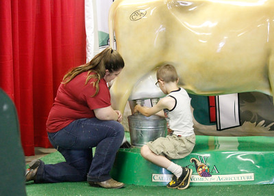 Jessie Peterson teaches Raymond Lenihan how to milk a cow at the Harvest Hall Thursday May 25, 2017 at the Silver Dollar Fairgrounds in Chico, California. (Emily Bertolino -- Enterprise-Record)