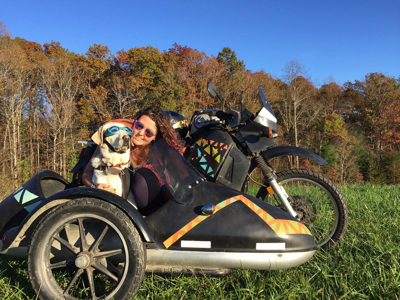 Day 152   November 11, 2015   near Blue Ridge, Georgia