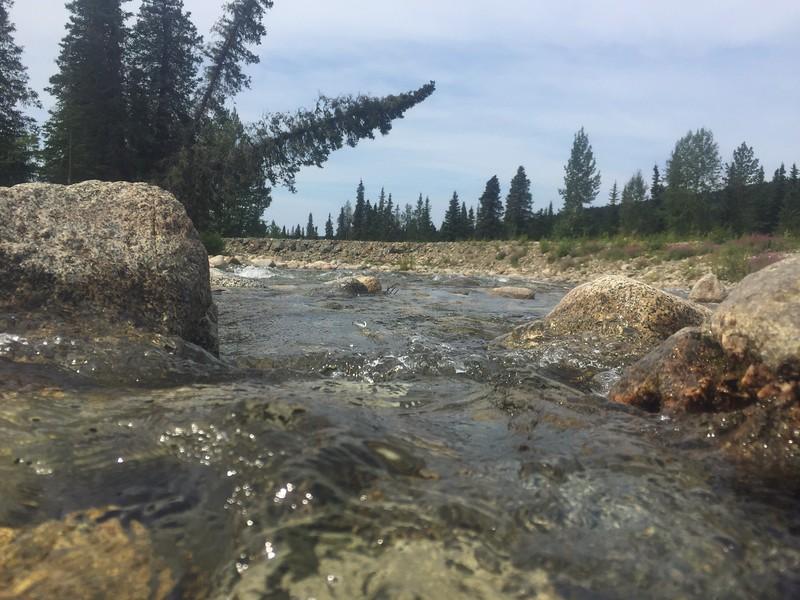 Day 51 | August 5. 2015 | Willow Creek - Hatcher Pass, Alaska