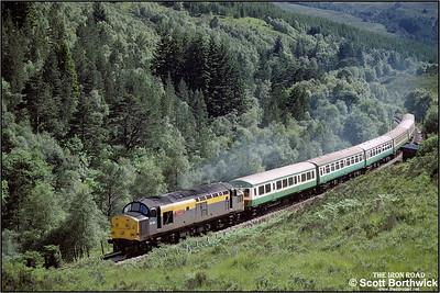 37156 'British Steel Hunterston' runs through Achnashellach forest whilst working 2H84 1510 Kyle of Lochalsh-Inverness on 13/07/1993.