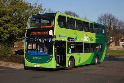 15463, AE09GYN, Stagecoach in the Fens
