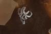 Dendronotus venustus