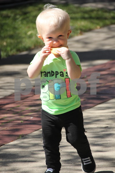 Opportunity Village Walk and Appreciation Lunch took place at the square by the library in Fort Dodge. The event was held on Sunday, September 11, 2016. Kaysen Geilenfeld is seen here happily munching on a cookie at the event.