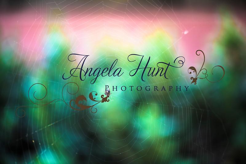 Shootout2016-0491