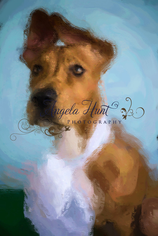 Dixie_21781190_hi3_Huntpainted