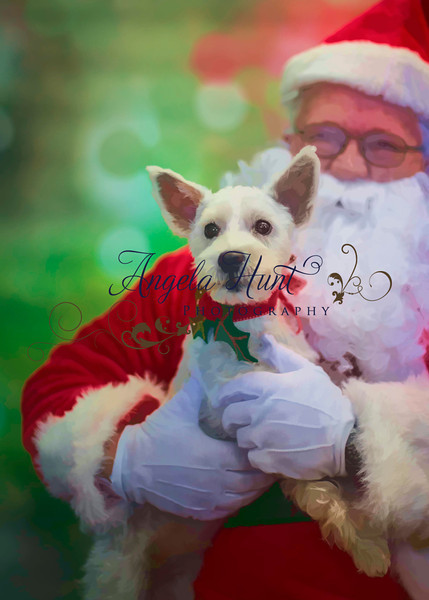 Santa Paws rendered in water colors