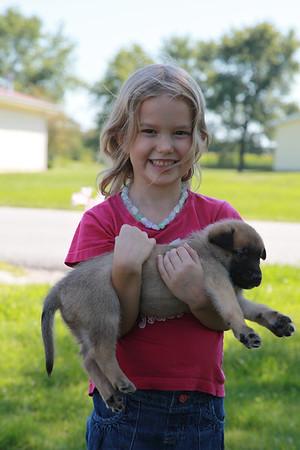 Orage puppies born on 7/27 taken 8/26