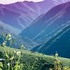 Bedford Peak Trail031517-17