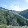 Bedford Peak Trail031517-14