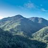 Bedford Peak Trail031517-3