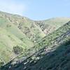 Bedford Peak Trail031517-4