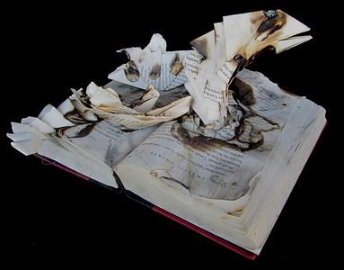 Cassandra Book2