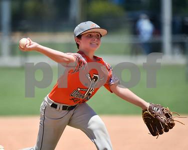 Orangeburg Minors Baseball - State Playoffs