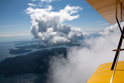 Wings_SW_view_IMG_0730
