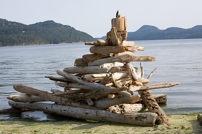 Another eclectic beach sculpture piece.  Too close to the water to last long!