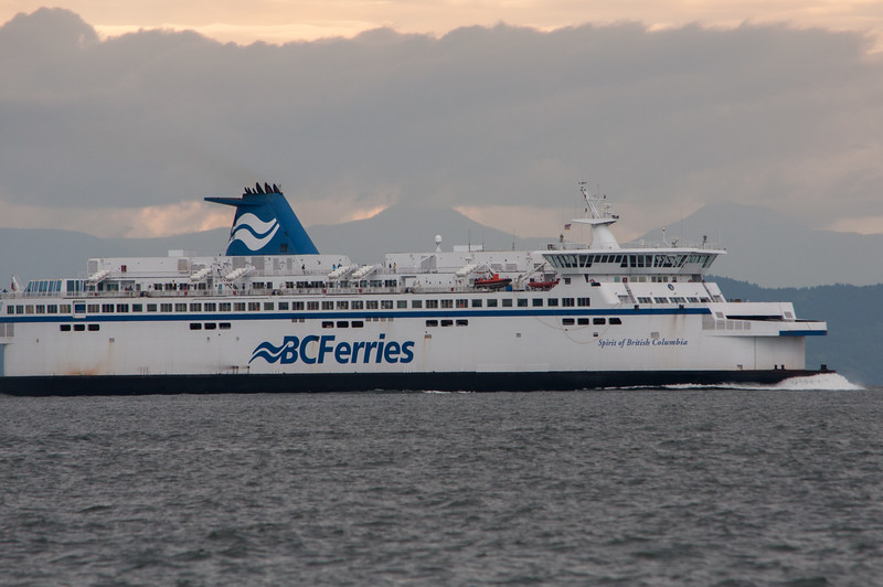 The Canadian ferries cutting back and forth were as interesting as the whales.