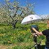 Billerica resident Mary Rose O'Connell adjusted the umbrella that shaded her masterpiece. Photo by Mary Leach
