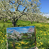 The painting of the orchard stood in front of the blooming trees. O'Connell said she would complete it later. Photo by Mary Leach