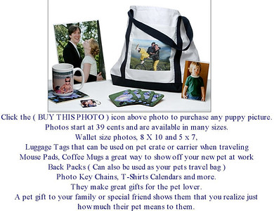 Click Open Instructions To Purchase Photo Gifts. Click TexasTeacups top left to see all photo gallaries.