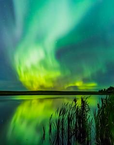 Vertical Pond Aurora