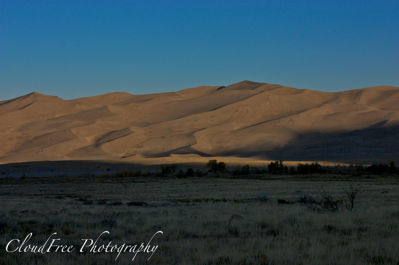 Sunrise over the sand dunes<br /> Great Sand Dunes, CO