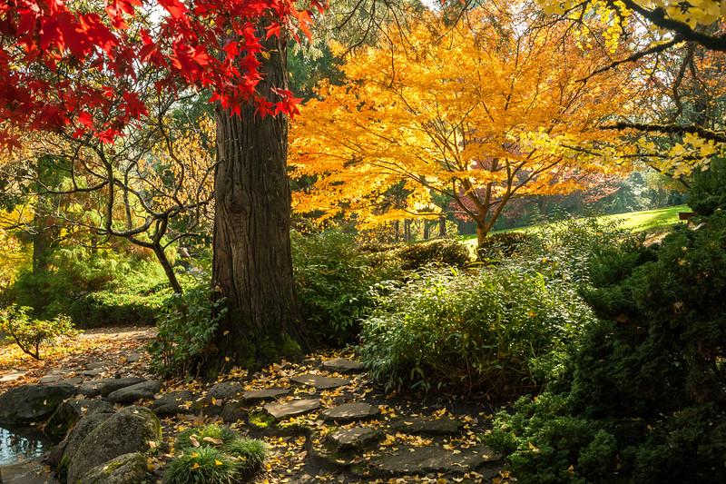 Japanese Garden, Lithia Park, Ashland, OR