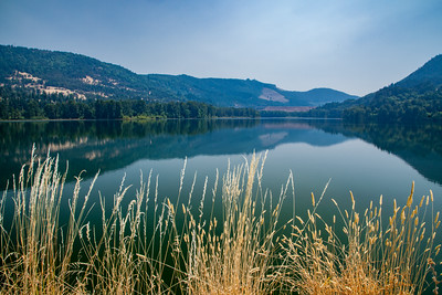 Haze from a heat inversion together with smoke from forest fires in Oregon and British Columbia obscures Lookout Point Dam across Lookout Reservoir, Middle Fork of the Willamette River, Oregon.