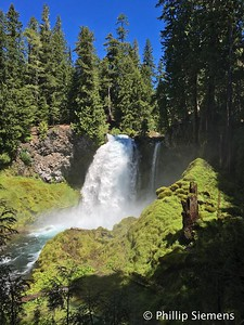 Waterfall on McKenzie River