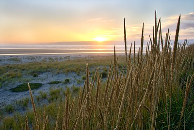 Gearhart sunset from the sea grass