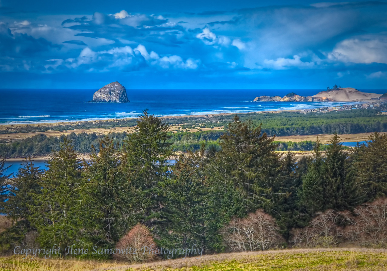 The Other Haystack Rock<br /> Nestucca National Wildlife Refuge, Oregon
