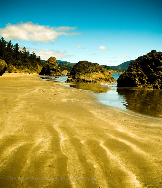 Port Orford Sand Patterns, Oregon