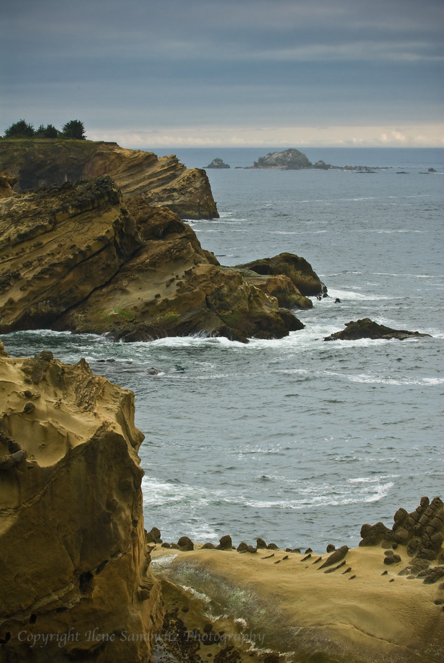 Shore Acres State Park, Oregon