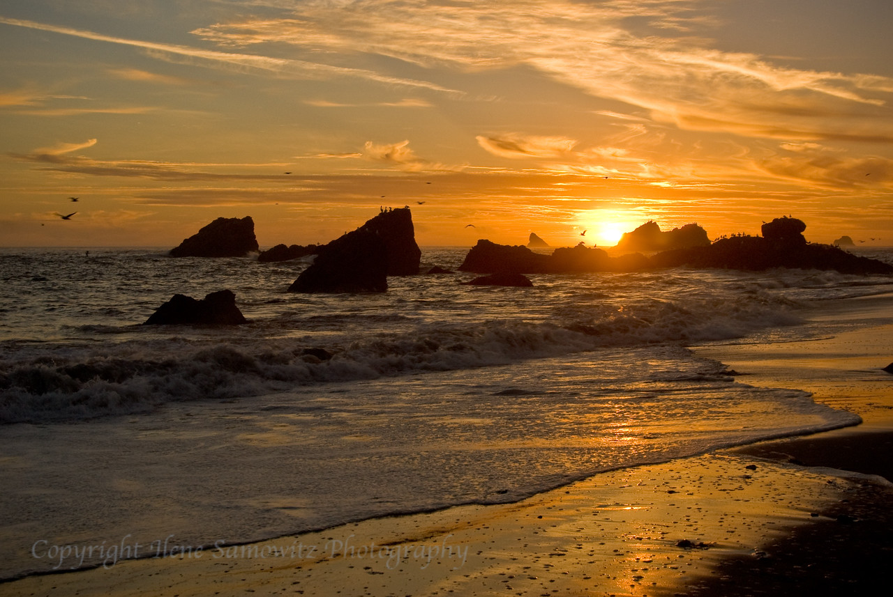 Harris Beach Sunset, Oregon