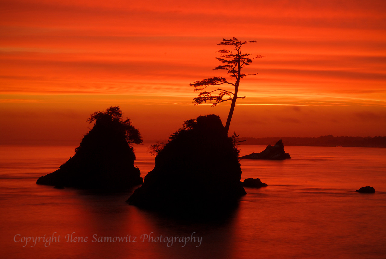 Three Graces, Garibaldi, Oregon