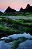 Tidal Pools - Seal Rock State Wayside - Marty Farwell - June 2010