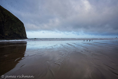 March 14 (Cannon Beach am) 129-Edit