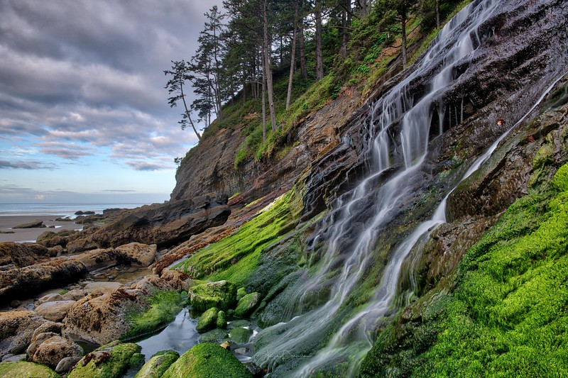 Smuggler's Cove ~ Oregon Coast