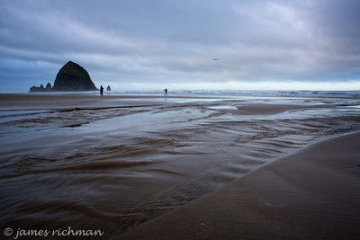 March 14 (Cannon Beach am) 069-Edit