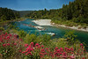 Blooms and River in Northern California - Oregon Coast Tour - Marty Farwell - June 2010