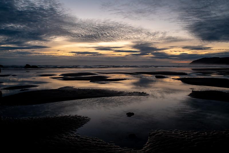 Low Tide Puddles