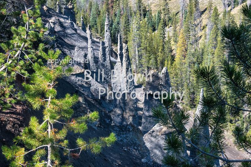 Femaroles on Hillside