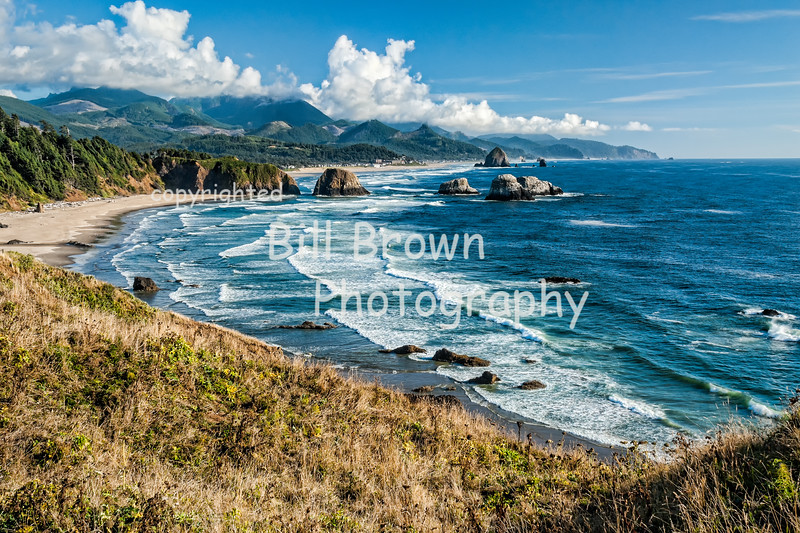 Looking South toward Cannon Beach from Ecola State Park