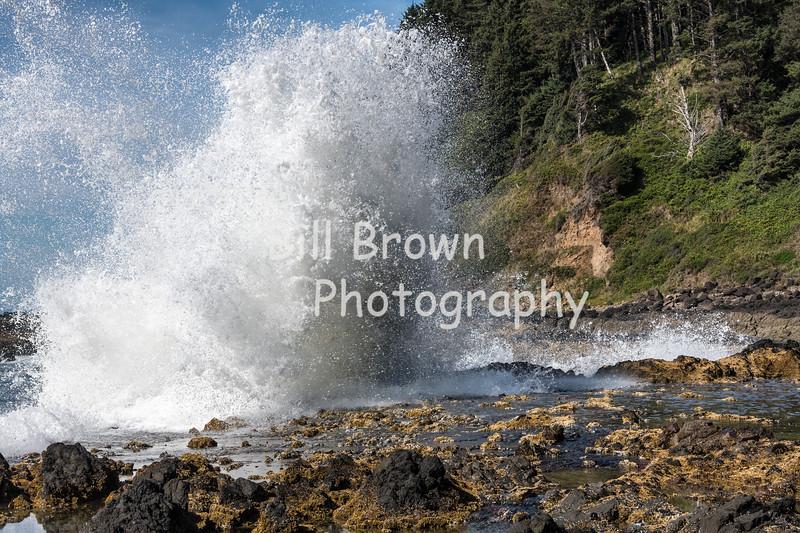 Crashing Waves at Cape Perpetua