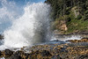 Crashing Waves at Cape Perpetua