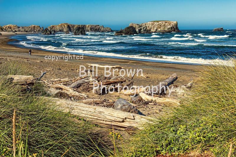 Beach in Bandon